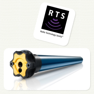 Motores RTS